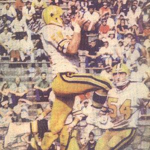 1975 Charlotte Hornets WFL